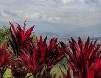 Kolumbien - Finca Capilla del Rosario