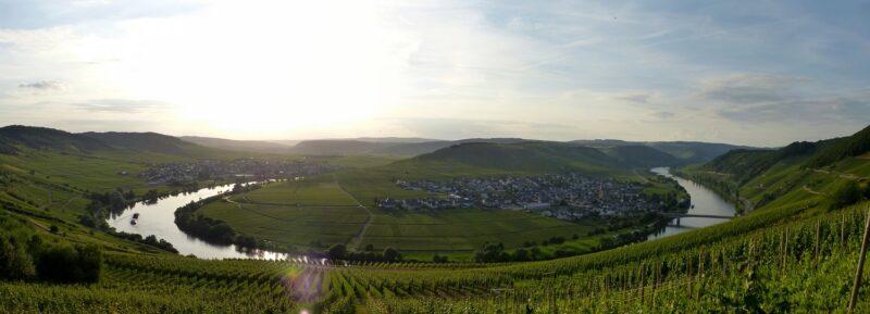 Panorama Leiwen und Trittenheim