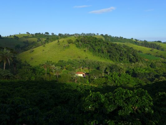 Fazenda Pinheirense